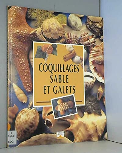 Coquillages, sable et galets